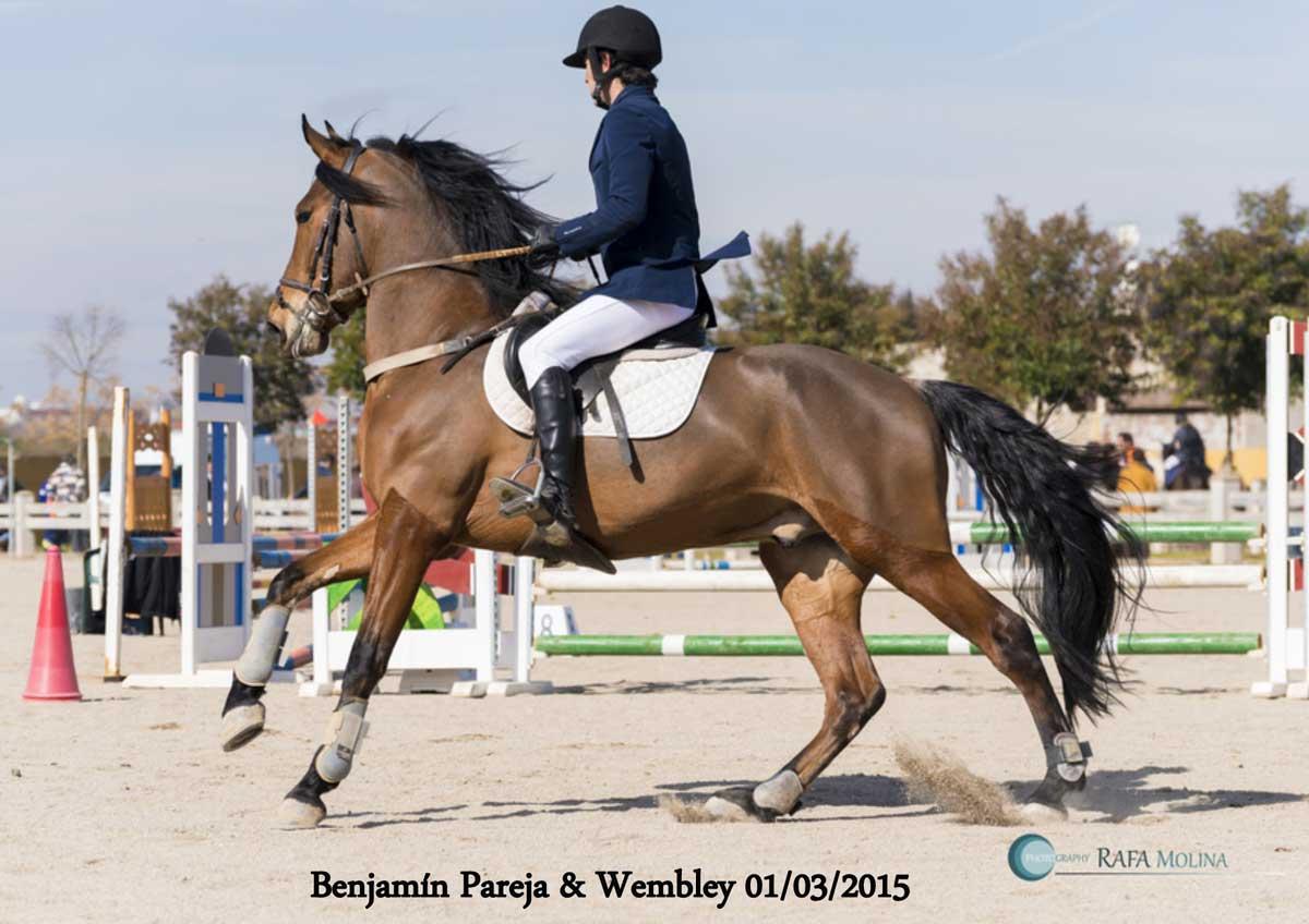 Els Cavalls_nok